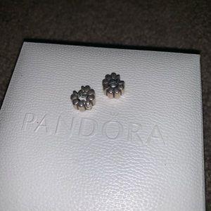 Pandora clips silver charms
